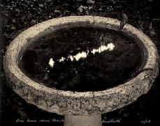 Mark Klett, One Hour Sun Track Through My Birdbath,
