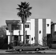 Apartment & Palm, 1975