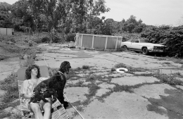 Woman Lounging with Poodles, Somerville, Massachusetts, 1981