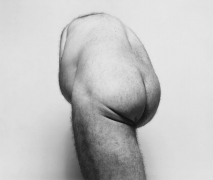 Back Torso from Below, 1985