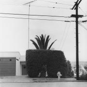 San Diego, 1978, vintage gealtin silver print