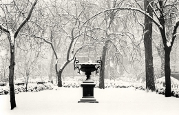 Winter Morning, Gramercy Park, New York, New York, 2003