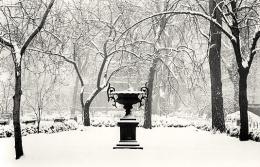 Winter Morning, Gramercy Park, New York, New York, 2003