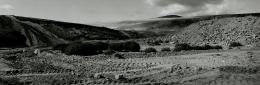 Recent Terrains, Study #24, Aliso Viejo, California, 1992