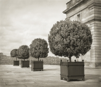 Standards, Blenheim Palace, from the series In the Garden