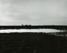 Untitled, from Farm Landscapes, 2005, gelatin silver contact print, 8 x 10 inches