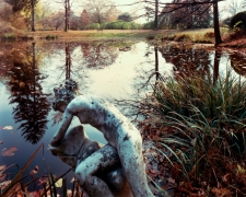 Old Westbury Garden, Old Westbury, NY, 1981