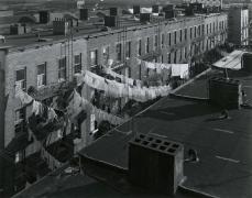 Tenement Rooftops, Hoboken, NJ