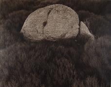 Rock on Gonnet, Lozere, France, 1995,