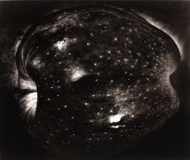 Paul Caponigro, Galaxy Apple, New York, 1964, gelatin silver print