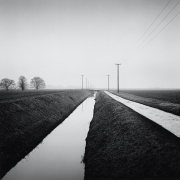 Holbeach St. Matthew, from the series, Farmed, 2010