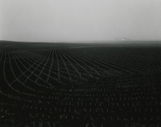 Untitled, from Illinois Landscapes, 1980, gelatin silver contact print, 8 x 10 inches