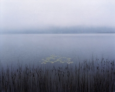 Fog on Post Pond, New Hampshire