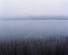 Fog on Post Pond, New Hampshire
