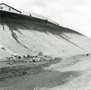 Phillips Ranch, Near Pamona