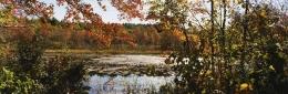 Pond near Southborough, Massachusetts