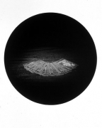 Cards, from the Paradise Series, 1993, gelatin silver print