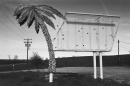 Earl Iverson Palm Tree Sign near Atchinson, Kansas