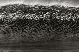 Anthony Friedkin Large Wave Face
