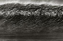 Anthony Friedkin Large Wave Face