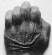 John Coplans Self Portrait (Back of Hand No. 1) 1986