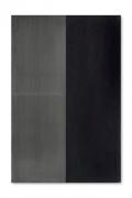 Günther FörgUntitled, 1988acylic and lead on wood94 1/2 x 63 inches (240 x 160 cm.)