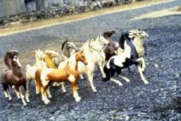 Laurie Simmons  Horses/Slant, 1979