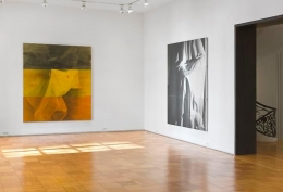 David Salle    Ghost Paintings