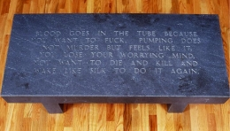Jenny Holzer, Under a Rock: Blood goes in the tube..., 1986