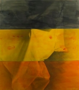 David Salle    Ghost Paintings