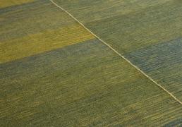 5013 Kia Sar - Green (angle shot)