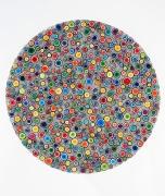 Shanthi Chandrasekar, Fields-Particles