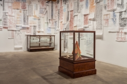 Installation view:The Flesh Is Yours, The Bones Are Ours, Rhona Hoffman Gallery,May 19 – August 13, 2016.Architect as Dragoman (The Flesh Is Yours, the Bones Are Ours), 2015.Mixed media, 52 x 31.5 x 31.5 inches.