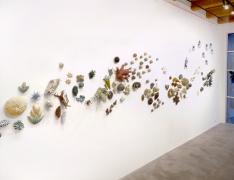 Installation view at Rhona Hoffman Gallery, Chris Garofalo, zoophyta, 2007-2008