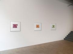 Installation view at Rhona Hoffman Gallery/Julia Fish/Threshold II/2017