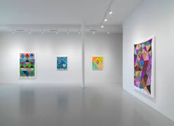 Installation view at Rhona Hoffman Gallery/Judy Ledgerwood/Far From the Tree/2018