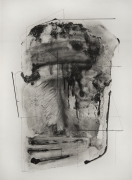 South (Water Table Ocular #2), 2017, Polymer gravure on Hahnemühle Copperlate White paper, 39.5 x 29 inches, Edition of 10.