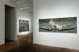 Paul Manes:Recent Paintings, February 20- March 27, 2021