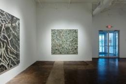 Paul Manes:Recent Paintings