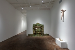Celia Eberle: Unintended Garden February 24 – March 31, 2018