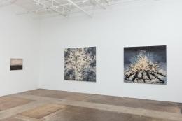 Paul Manes: Desire October 13 – November 10, 2018