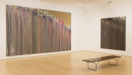Throw Decade larry poons
