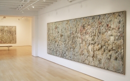Larry Poons, Radical Surface, 1985-1989