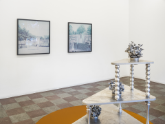 Installation Shot, In Search of a Future to Come, 2020