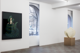 Installation Shot, Ikaros + Courtesy Private Collection, 2017