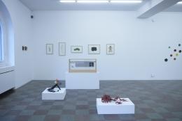 Installation Shot, WG.Editions, 2020