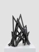 11 Acute Unequal Angles, Bernar Venet