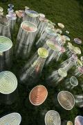 """""""Magic Wood"""" Ceramic Sculptures by Fausto Salvi, Close Up 3"""