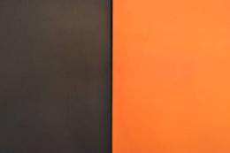 Monochromatic Diptych by Elen Feinberg