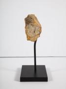 Neolithic Flint Stone Tool
